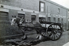 horse-cart-richmond