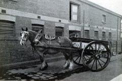 horse-cart-richmond